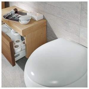 Сиденье с крышкой для унитаза Pure Stone 98M1S1S3